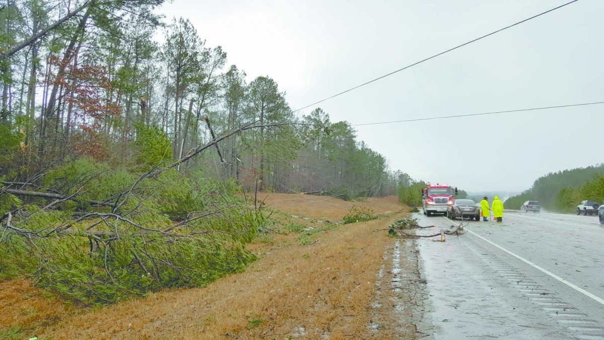 Trees and power lines down on state Highway 55 outside of McKenzie. (Bruce Branum/The Standard)